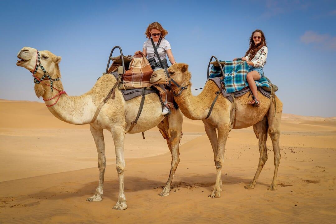 Camellos en desiertos de Marruecos, viajar